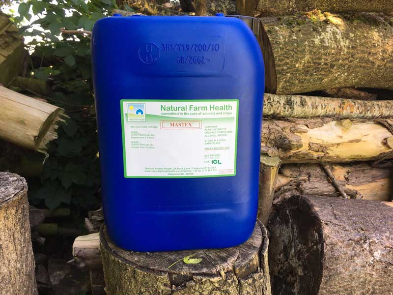 Fighting Mastitis in dairy cows with Mastex